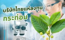 รวมบริษัทไทย เตรียมเข้าสู่ธุรกิจพืชกระท่อม หลังภาครัฐคลายล็อค ทั้งปลูก ซื้อ ขาย อย่างเสรี
