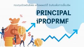 ส่อง PRINCIPAL iPROPRMF กองทุนรวมเพื่อการเลี้ยงชีพนโยบายตราสารทุน ผลตอบแทนสูงสุด ในปี 2562