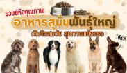 แนะนำ 10 อาหารสุนัขพันธุ์ใหญ่ ดีต่อสุภาพ ยี่ห้อไหนดี 2021