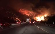 คลิปเด็ด! เหตุการณ์ระทึก ไฟไหม้ป่า บนถนนฟรีเวย์ LA สหรัฐฯ